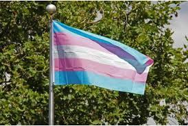 Transgender flag (00630711xD7EDD)